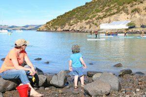 Community members enjoying Lyttelton harbour area