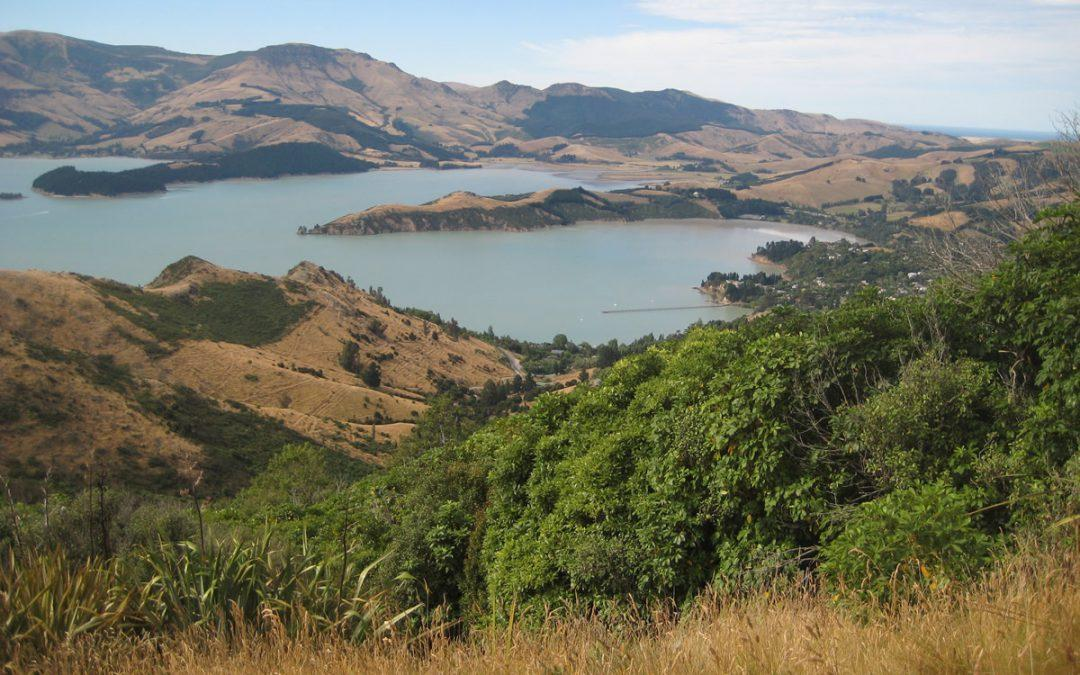 Looking towards the future of Whakaraupō/ Lyttelton Harbour